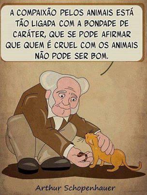 A compaixão pelos animais