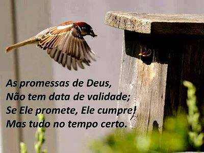 As Promessas De Deus Frase Para Facebook