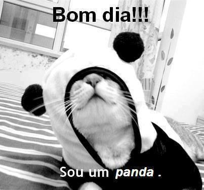 Sou um panda