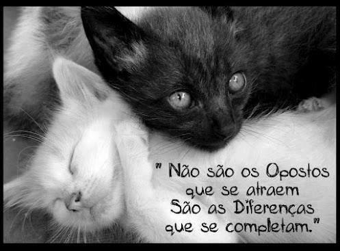Frases De Amor Para Facebook Página 232 De 238