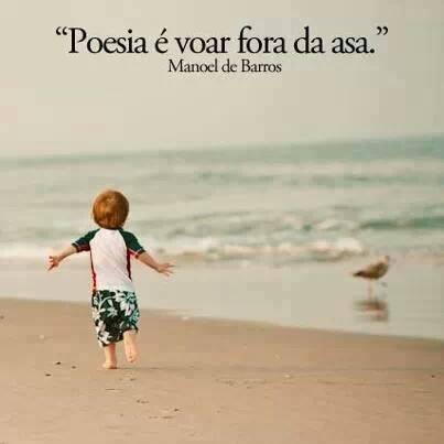 Poesia é voar