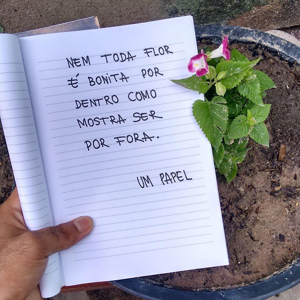 Nem Toda Flor E Bonita Por Dentro Frase Para Facebook