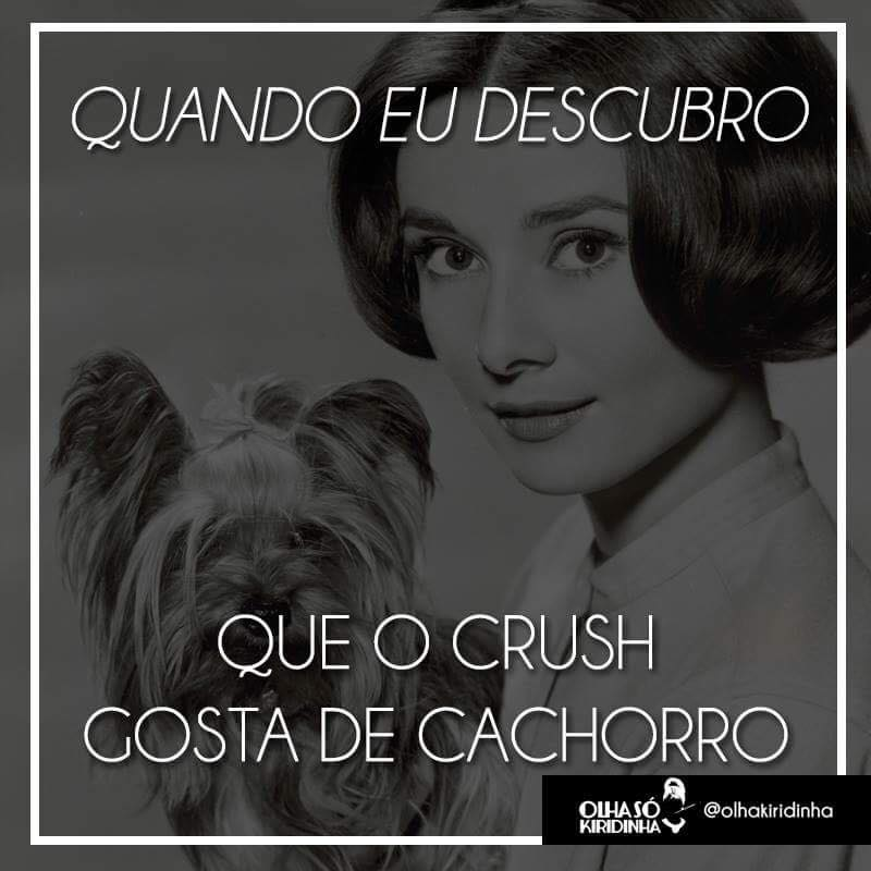 O crush gosta de cachorro