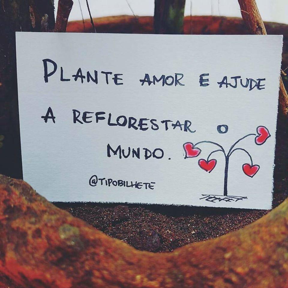 Plante amor e ajude
